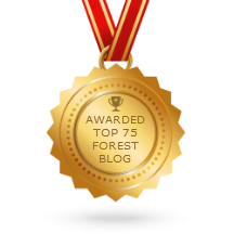 blog award.png