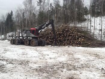 Maine Forest Industry Positioning Itself for the Future
