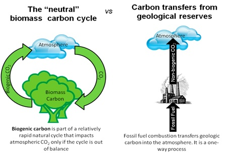 Bio-Nonbiogenic_Carbon_Sources.jpg