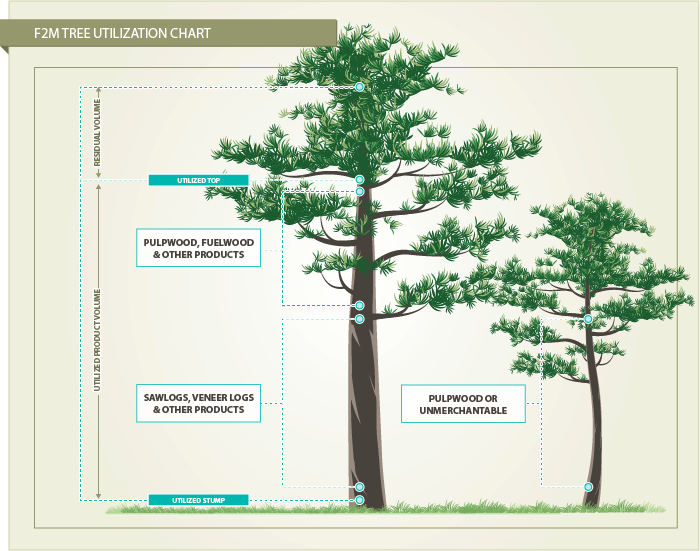 Tree_Inventory_Utilization_03.png