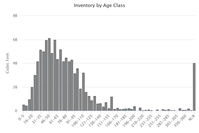 Inventory_4.jpg