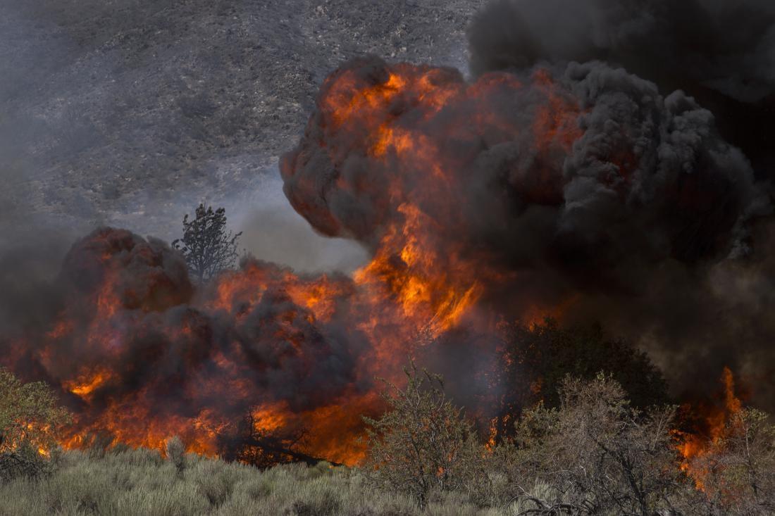 california-wildfire-wild-fire.jpeg