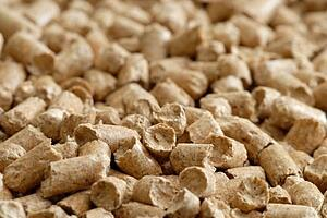 Wood_Pellets_-_cropped