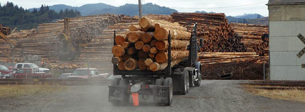 Proposed Chinese Tariffs: Potential impacts for the PNW Forest Industry