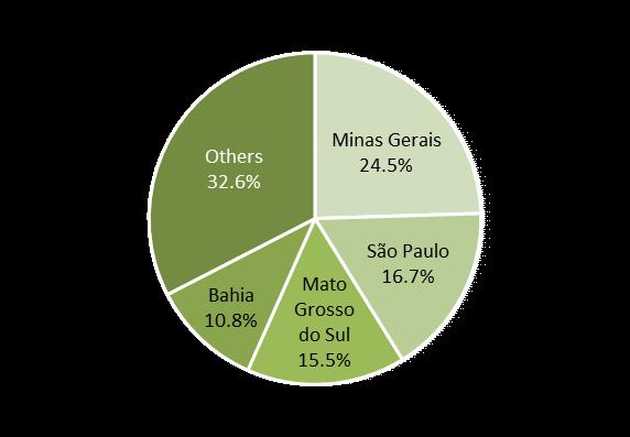 Surge in Eucalyptus Demand in Mato Grosso do Sul