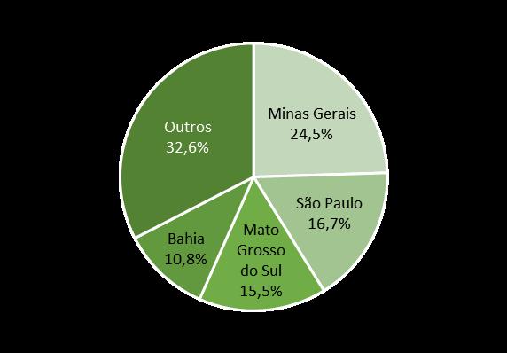 O mercado de eucalipto no estado de São Paulo: da água ao vinho