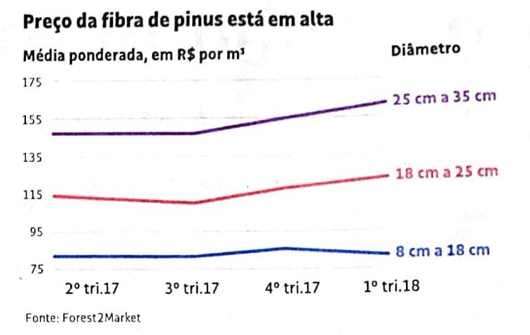 Marcelo Schmidfala sobre oferta e demanda na Folha de São Paulo