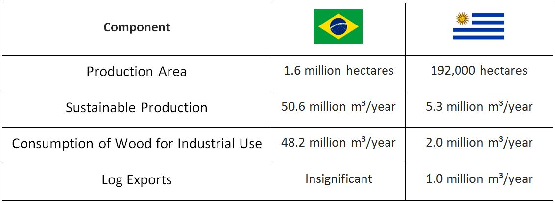 Investment Opportunities in Uruguay's Forestry Industry